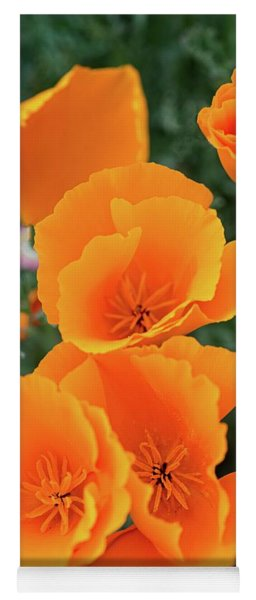 Yoga Mat featuring the photograph Gorgeous Orange California Poppies by Lynn Bauer