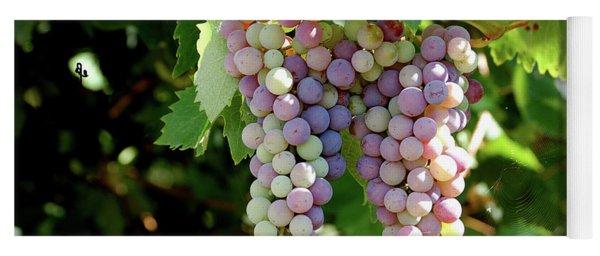Grapes In Color  Yoga Mat