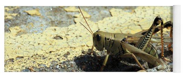 Grasshopper Laying Eggs Yoga Mat