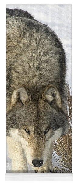 Gray Wolf Yoga Mat