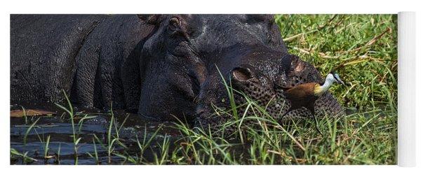 The Hippo And The Jacana Bird Yoga Mat