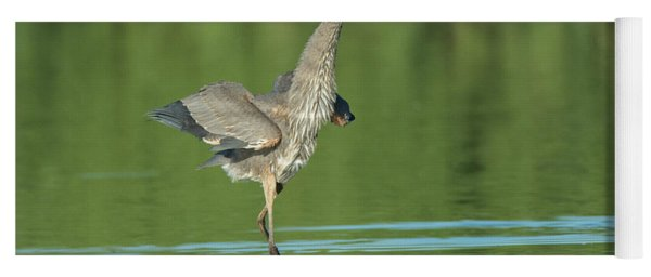 Great Blue Heron 5637-092217-1cr Yoga Mat