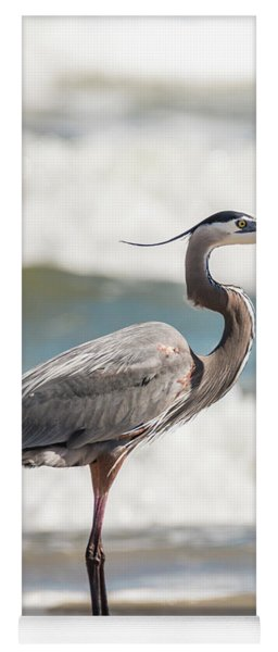Yoga Mat featuring the photograph Great Blue Heron Profile by Patti Deters