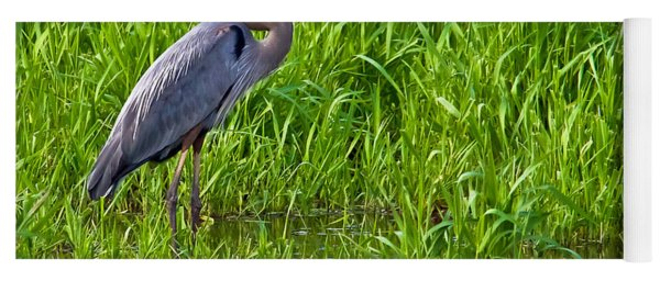 Great Blue Heron Waiting Yoga Mat