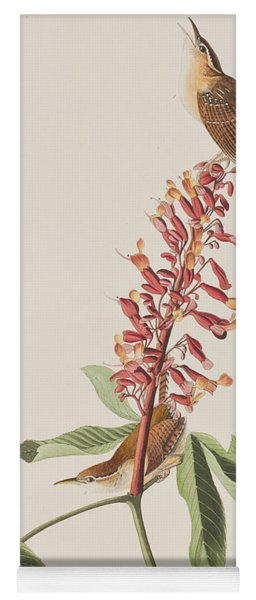 Great Carolina Wren Yoga Mat