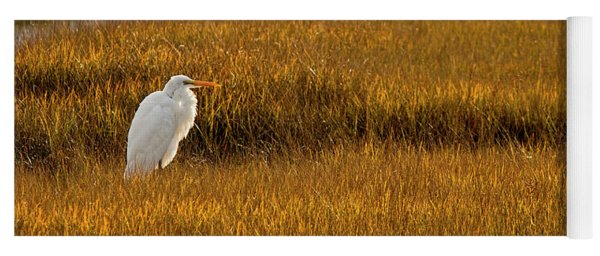 Yoga Mat featuring the photograph Great Egret In Morning Light by Kristia Adams