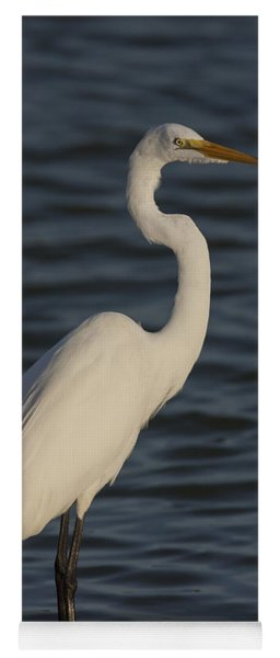 Great Egret In The Last Light Of The Day Yoga Mat