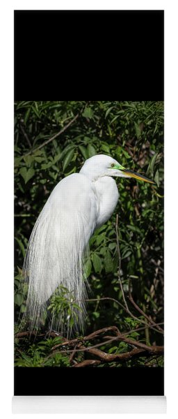 Great Egret Portrait One Yoga Mat