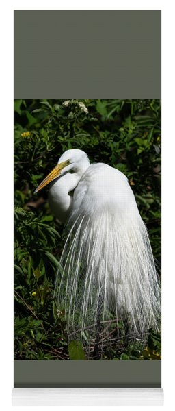 Great Egret Portrait Two Yoga Mat