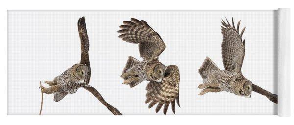 Great Grey Owl Hunting Yoga Mat