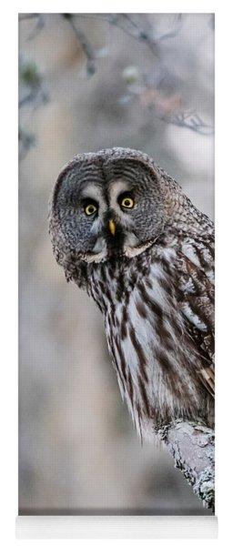 Great Grey Owl Yoga Mat