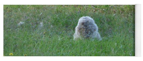 Great Horned Owl Baby Yoga Mat
