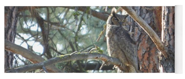 Great Horned Owl In A Tree Yoga Mat