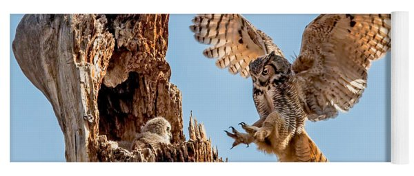Great Horned Owl Returning To Her Nest Yoga Mat