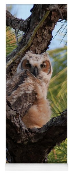 Great Horned Owlet Yoga Mat
