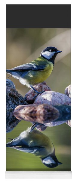 Great Tit On The Stone Yoga Mat