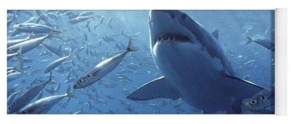 Great White Shark Carcharodon Yoga Mat