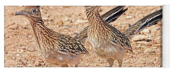 Greater Roadrunner Bird Yoga Mat