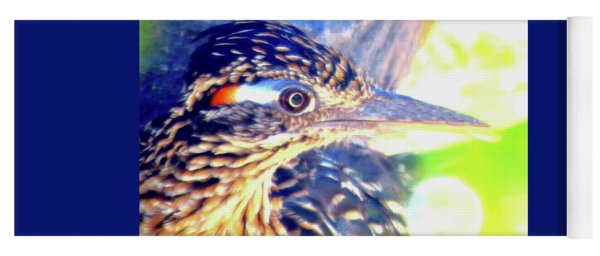 Greater Roadrunner Portrait 2 Yoga Mat