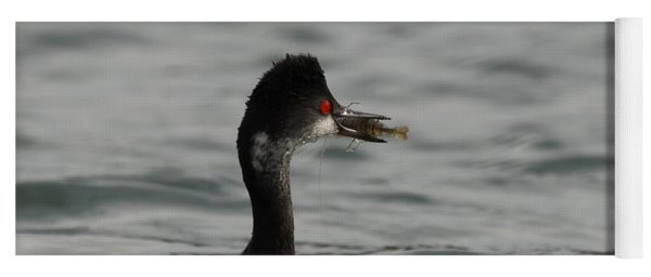 Yoga Mat featuring the photograph Grebe Enjoys Shrimp by Eyes4Nature
