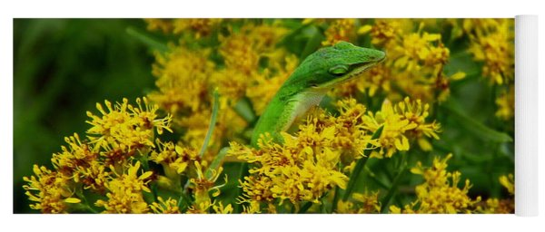 Green Anole Hiding In Golden Rod Yoga Mat