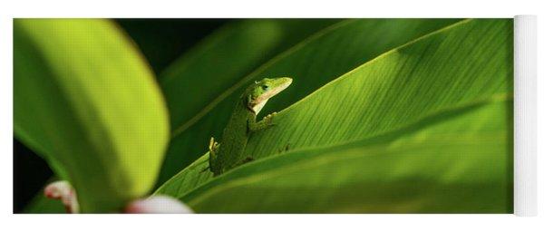 Green Anole Lizard Blue Springs State Park Florida Yoga Mat