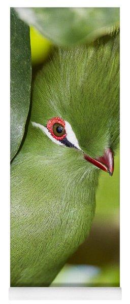 Green Turaco Bird Portrait Yoga Mat