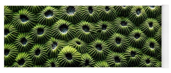 Green Coral Yoga Mat