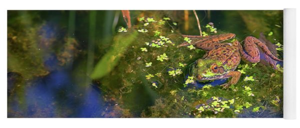 Green Frog In The Pond Yoga Mat