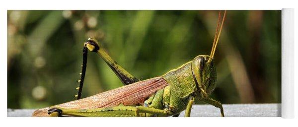 Green Grasshopper Yoga Mat