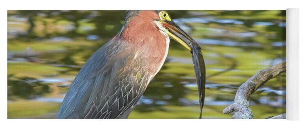 Green Heron With Fish Yoga Mat