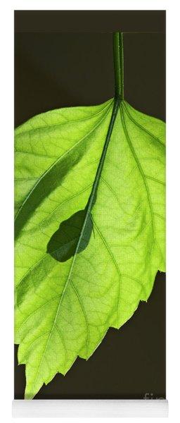 Green Hibiscus Leaf Yoga Mat