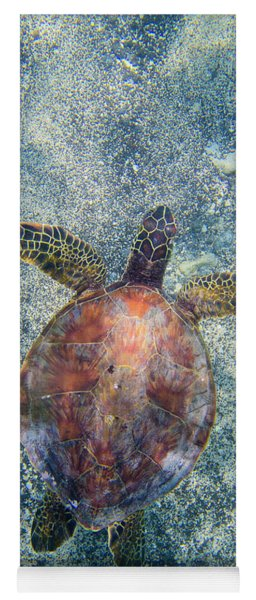Green Sea Turtle From Above Yoga Mat
