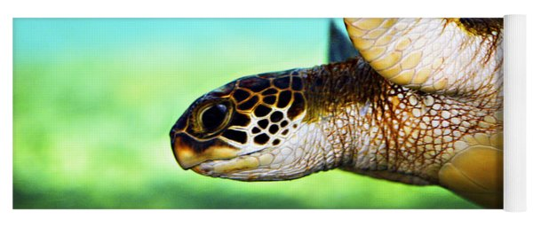 Green Sea Turtle Yoga Mat