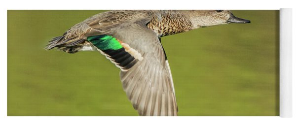 Green-winged Teal 6320-100217-2cr Yoga Mat