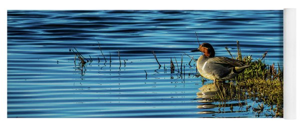 Green-winged Teal Yoga Mat