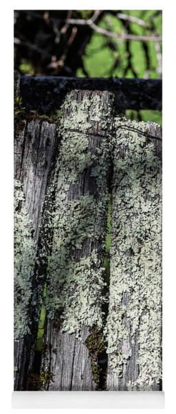 Greenshield Lichen On Mossy Picket Fence Yoga Mat