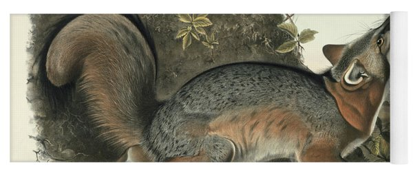 Grey Fox Yoga Mat