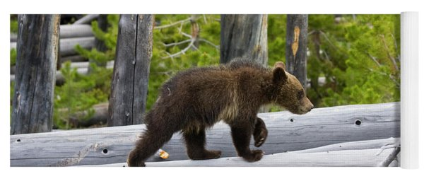 Grizzly Cub Yoga Mat