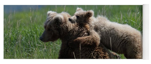 Grizzly  Mother And A Cub In Katmai National Park Yoga Mat