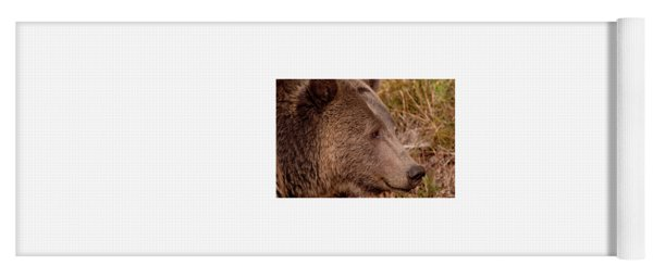 Grizzly Profile Yoga Mat