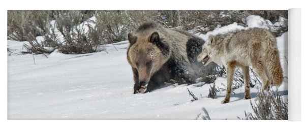 Grizzly With Coyote Yoga Mat