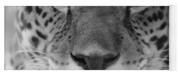 Grumpy Tiger  Yoga Mat