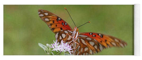 Gulf Fritillary On Elephantsfoot Yoga Mat