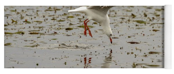 Gull Fishing 01 Yoga Mat