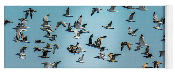 Gulls In Flight Yoga Mat