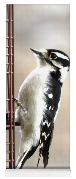 Hairy Woodpecker Yoga Mat
