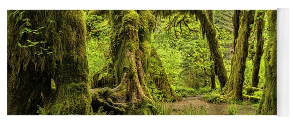 Hall Of Mosses - Olympic National Park Yoga Mat