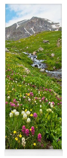 Yoga Mat featuring the photograph Handie's Peak And Alpine Meadow by Cascade Colors