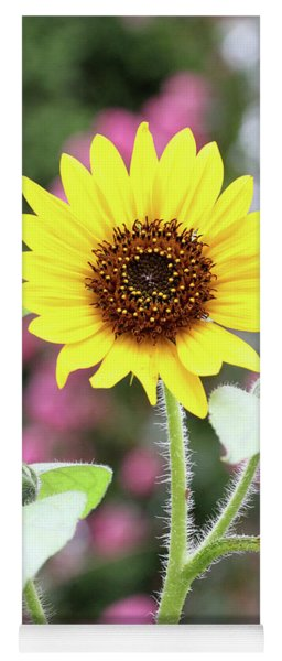 Yoga Mat featuring the photograph Happy Sunflower by Trina Ansel